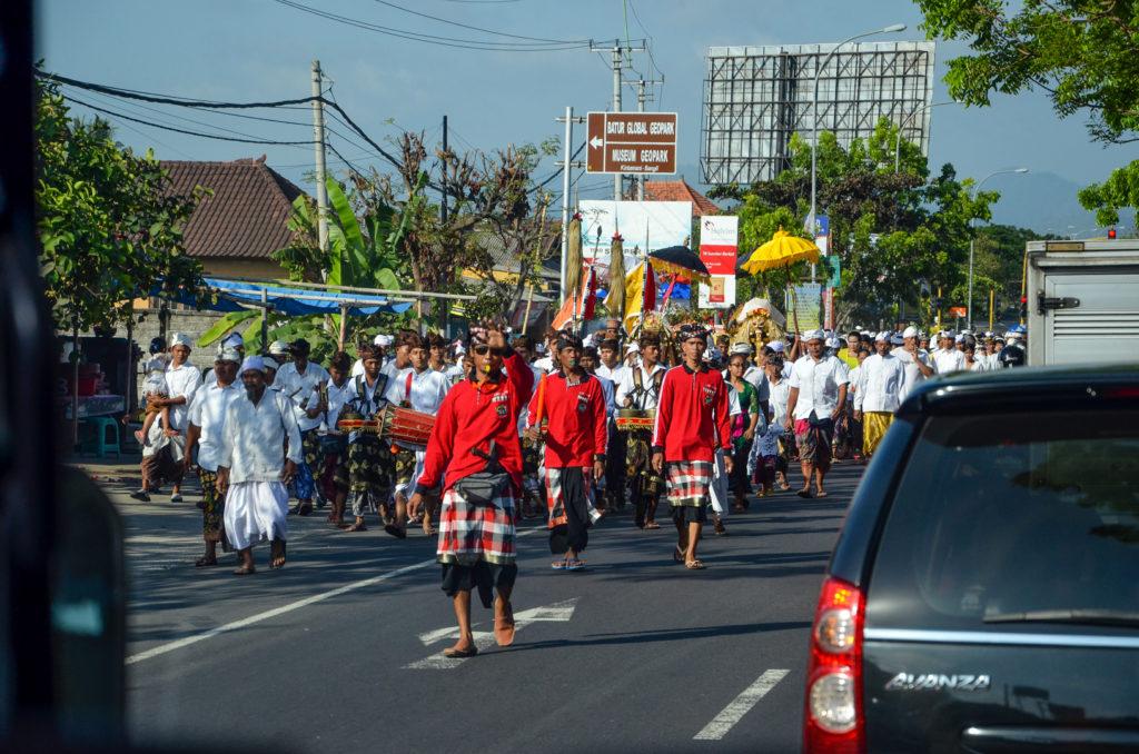 Procesia veriach, Bali